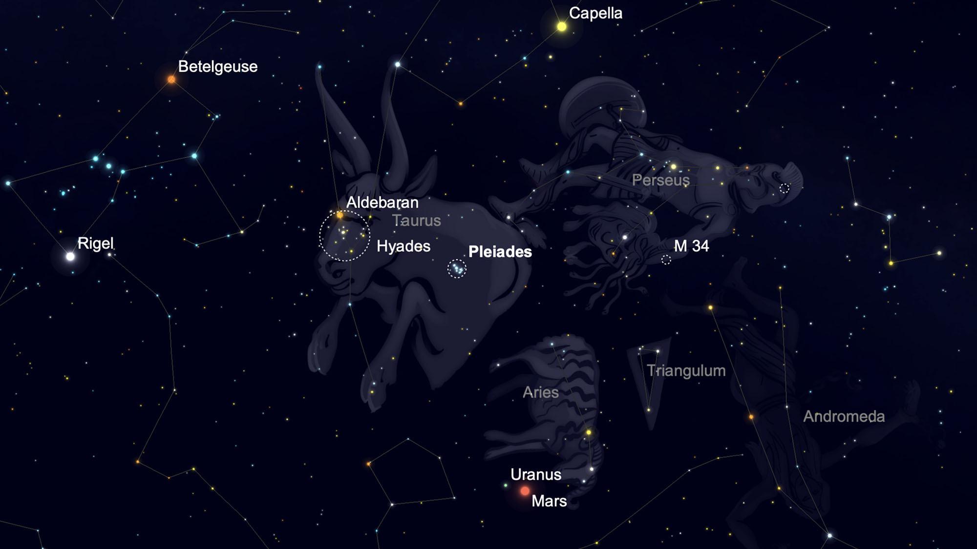 Repérez plusieurs amas d'étoiles dans le ciel nocturne d'hiver.
