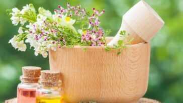 Des élixirs Floraux Pour Améliorer La Concentration