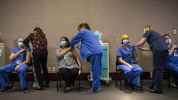 La Variante Britannique Du Coronavirus Pourrait Devenir La Souche Américaine