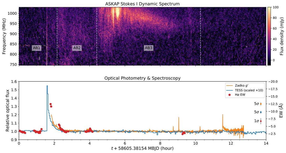 Données radio et optiques de Proxima Cen dans la nuit du 2 mai 2019. Le panneau supérieur montre le «spectre dynamique» ASKAP, montrant comment l'intensité varie avec la fréquence radio et l'heure.  Le panneau inférieur montre les données des télescopes optiques, révélant une puissante explosion de rayonnement.  Lorsqu'ils sont jumelés, l'apparition de sursauts radio puissants associés à une activité de torchage devient claire.