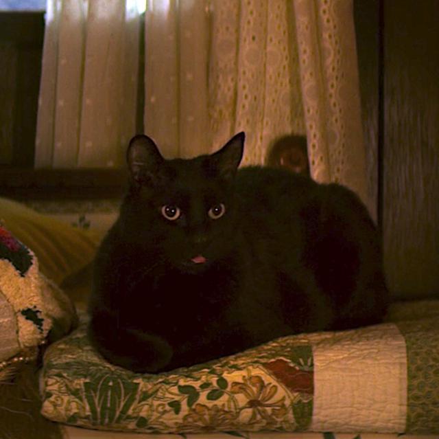 Le nouveau Salem a été fortement critiqué (Photo: Netflix)