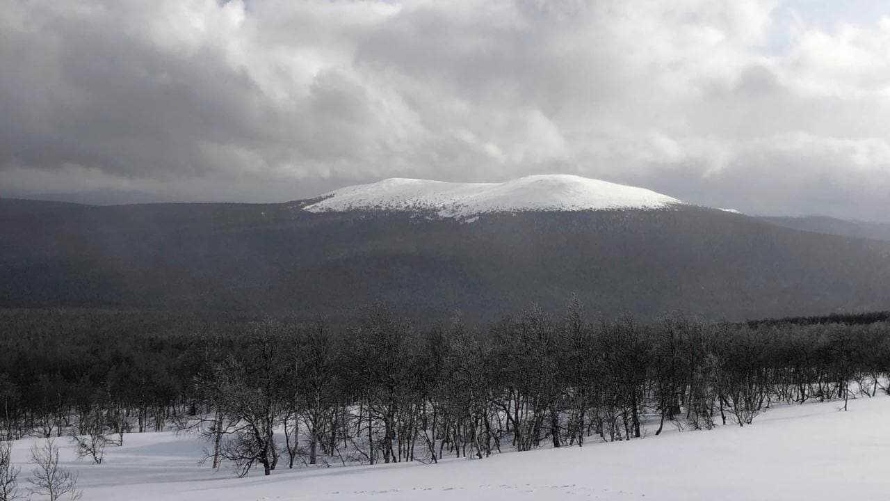 Le mystère de la montagne russe Dyatlov dévoilé après de nombreuses décennies, des morts inexpliquées