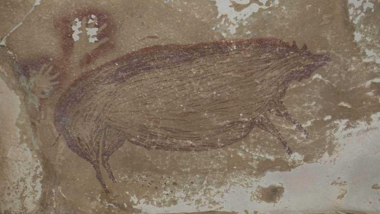 L'image grandeur nature d'un cochon sauvage est la plus ancienne peinture rupestre au monde d'il y a 45000 ans