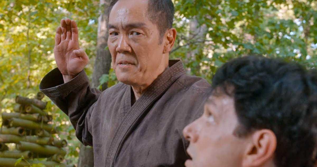 Pourquoi Cobra Kai Saison 3 Devait Il Revisiter Le Karate Kid