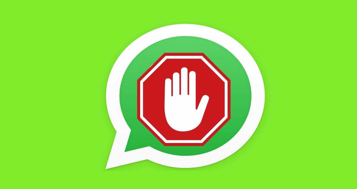 WhatsApp ne mettra pas à jour ses conditions d'utilisation pour le moment