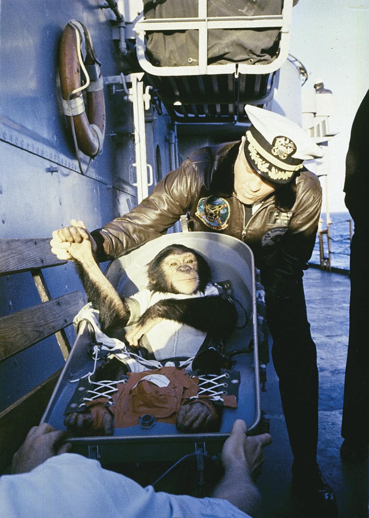 Ham serre la main d'un membre de l'équipe de récupération après sa sortie de la capsule.