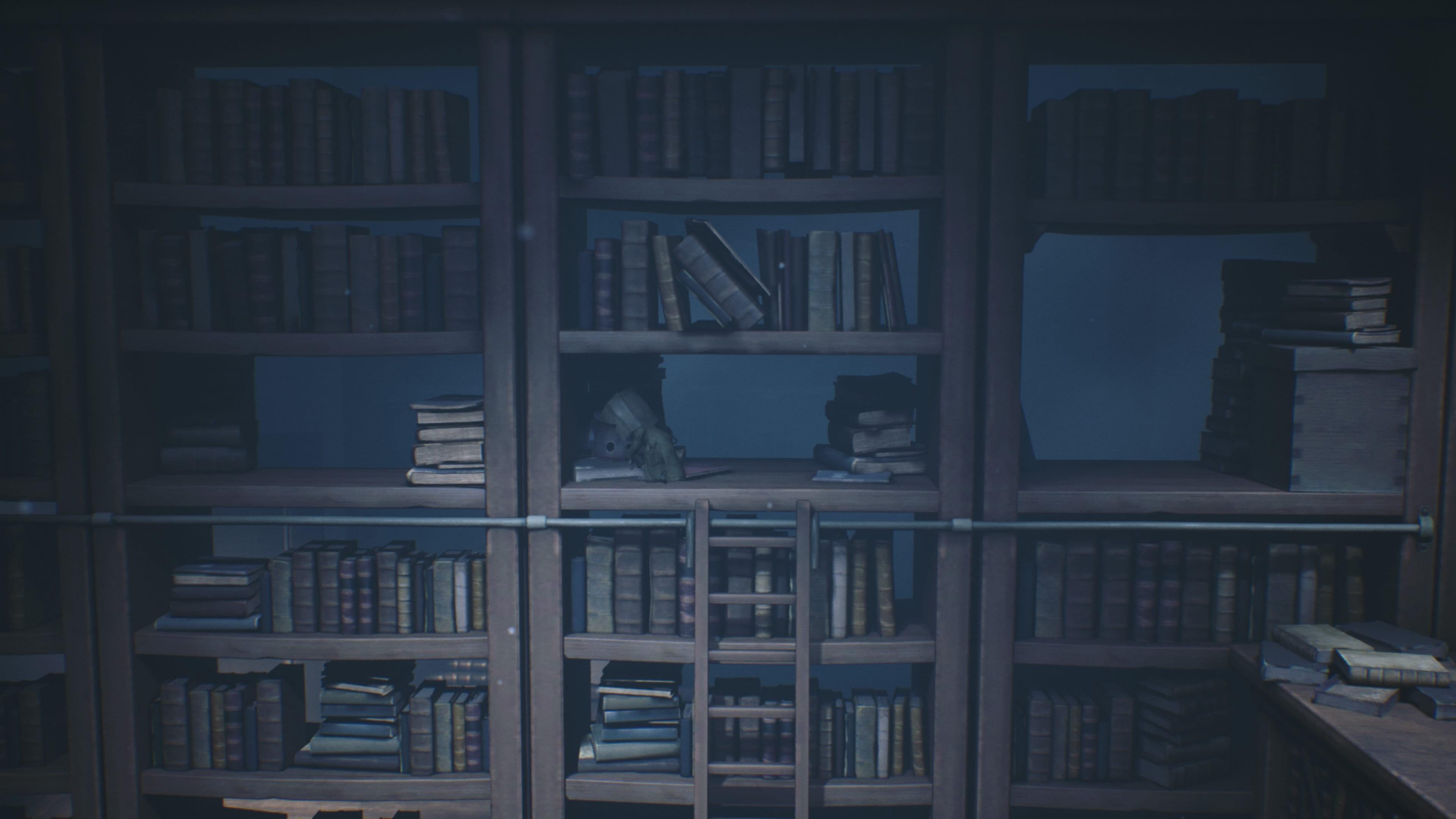 Bibliothèque Little Nightmares 2