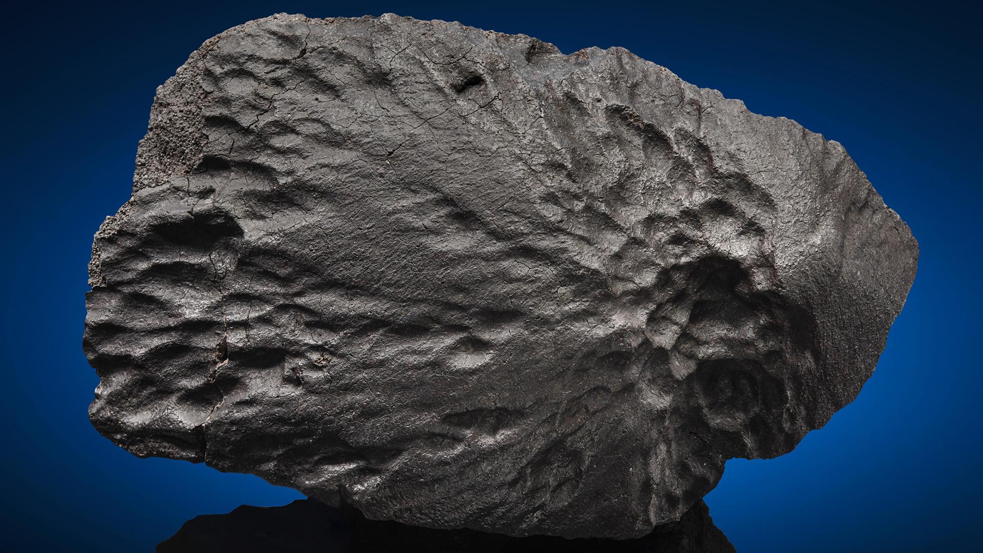 Contrairement à 99% de toutes les météorites, ce spécimen a subi un minimum de chute lors de sa plongée dans notre atmosphère.