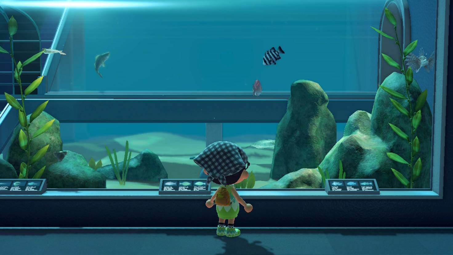 Aquarium Animal Crossing New Horizons