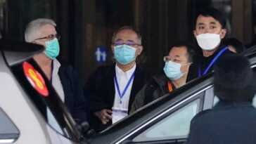 Qna: Des Experts De L'oms Et Des Chercheurs Chinois Vont