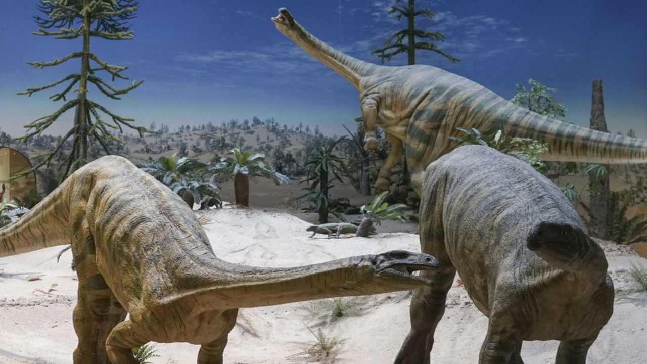 Modèles de Plateosaurus au Musée national d'histoire naturelle de Stuttgart.  Selon une étude publiée le 16 février 2021, des dinosaures herbivores comme ceux-ci sont probablement arrivés dans l'hémisphère nord plusieurs millions d'années plus tard que leurs cousins carnivores. Image: Randall Irmis / AP