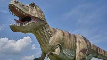 Angoisse Chez Les Adolescents? T Rex, D'autres Grands Dinosaures Ont Surpassé