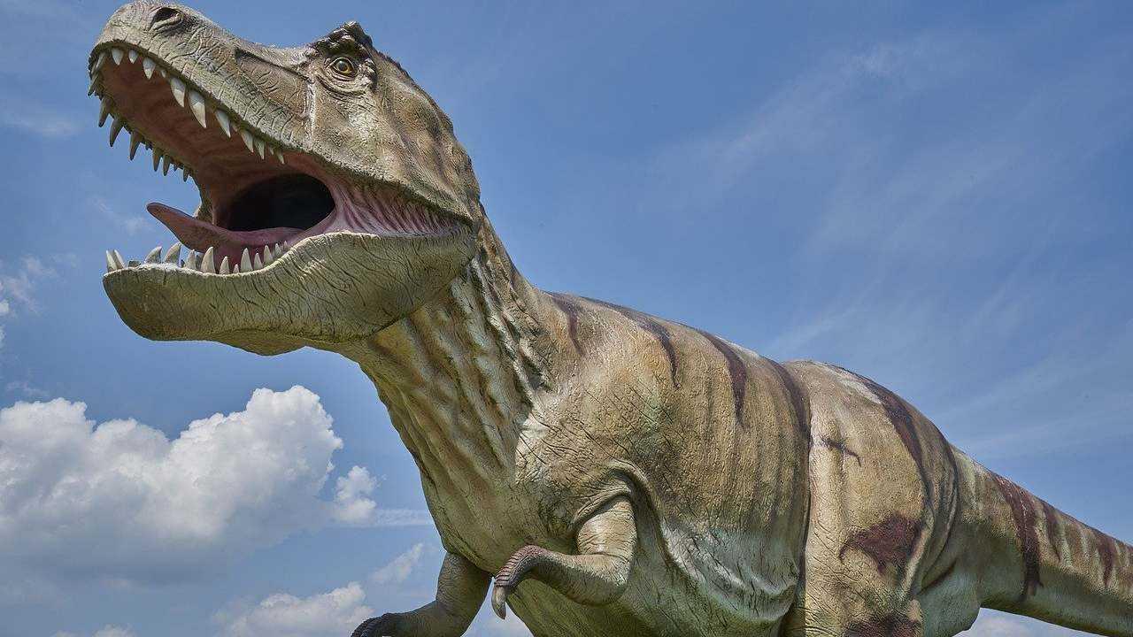 Angoisse chez les adolescents?  T-Rex, d'autres grands dinosaures ont surpassé les espèces rivales plus petites, selon une étude