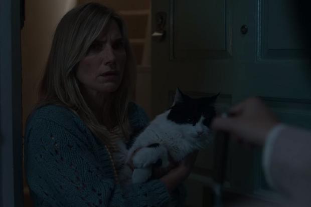 Dans la série, le chat de Marianne a survécu, mais la même chose ne s'est pas produite dans le livre (Photo: Netflix)