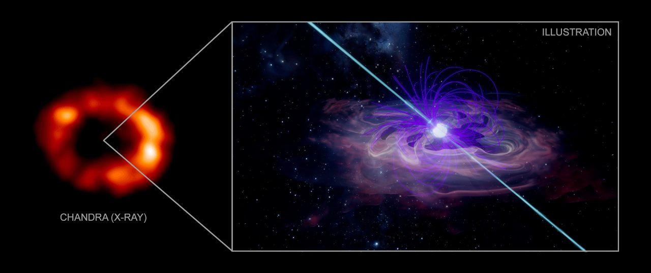 Des restes insaisissables d'étoiles à neutrons de la célèbre Supernova 1987A enfin retrouvés, affirment des scientifiques
