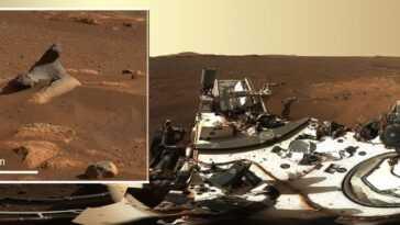 'harbour Seal Rock' Sur Mars Et D'autres Nouveaux Sites Intriguent