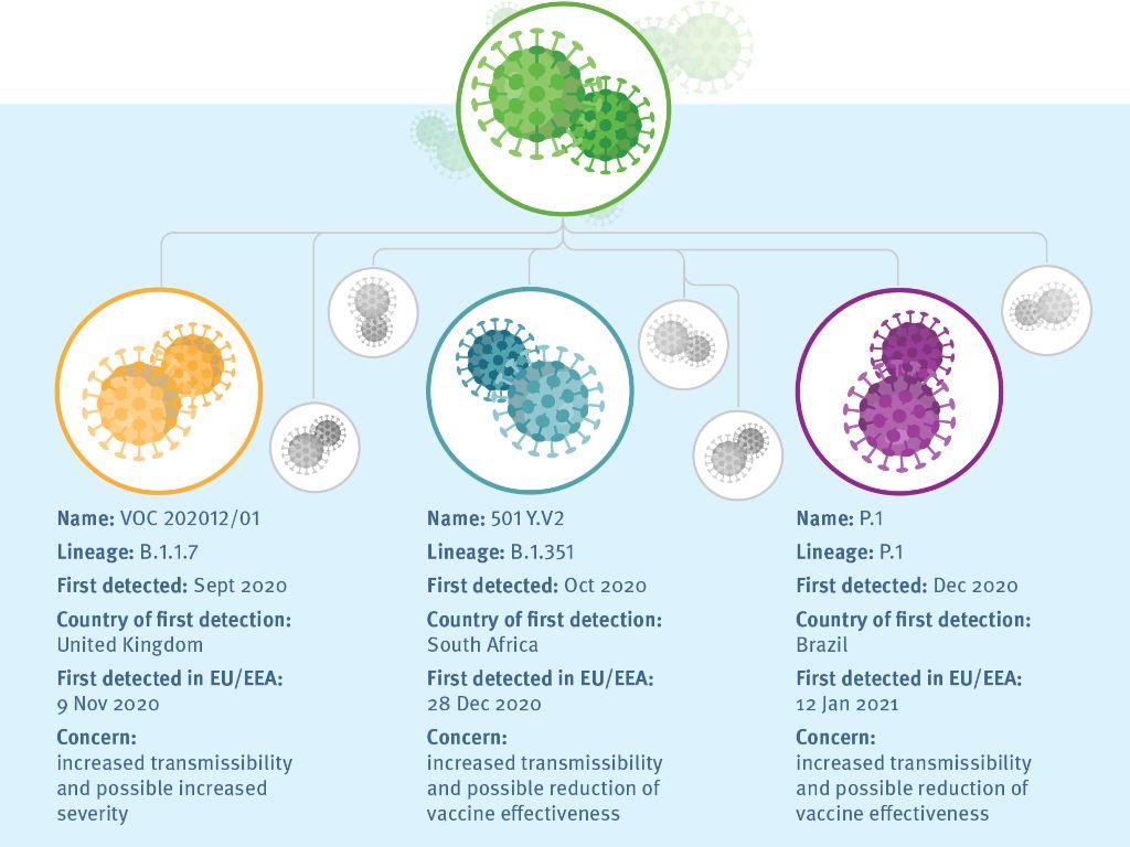 Jargon COVID-19: Variante, souche et mutation du SRAS-CoV-2 signifient toutes des choses différentes