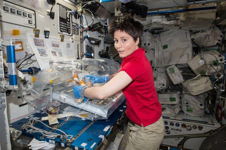 Les astronautes devront mener des expériences.