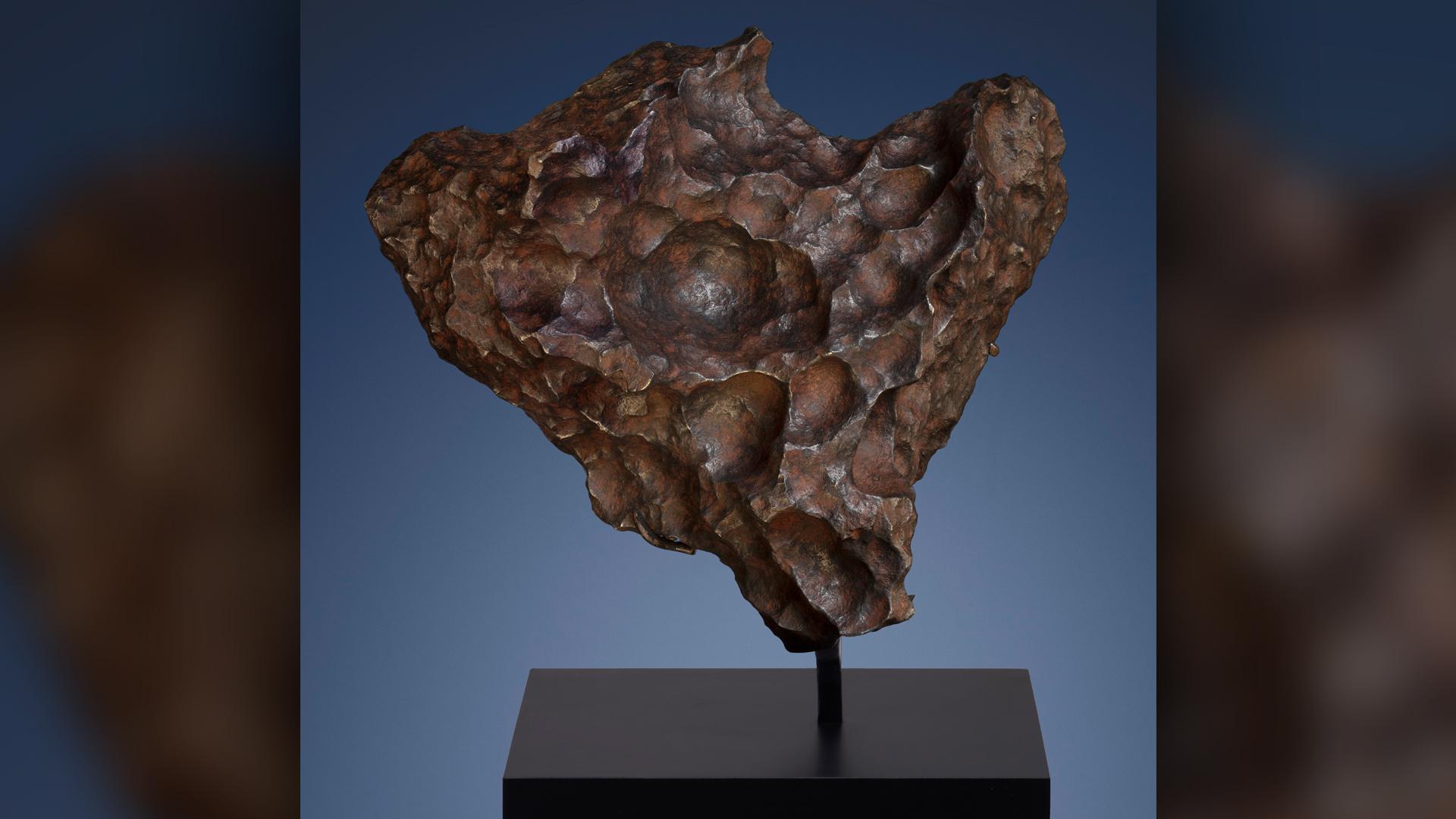 Un morceau de la météorite Gibeon, qui est originaire du noyau de fer d'un astéroïde formé il y a 4,5 milliards d'années.