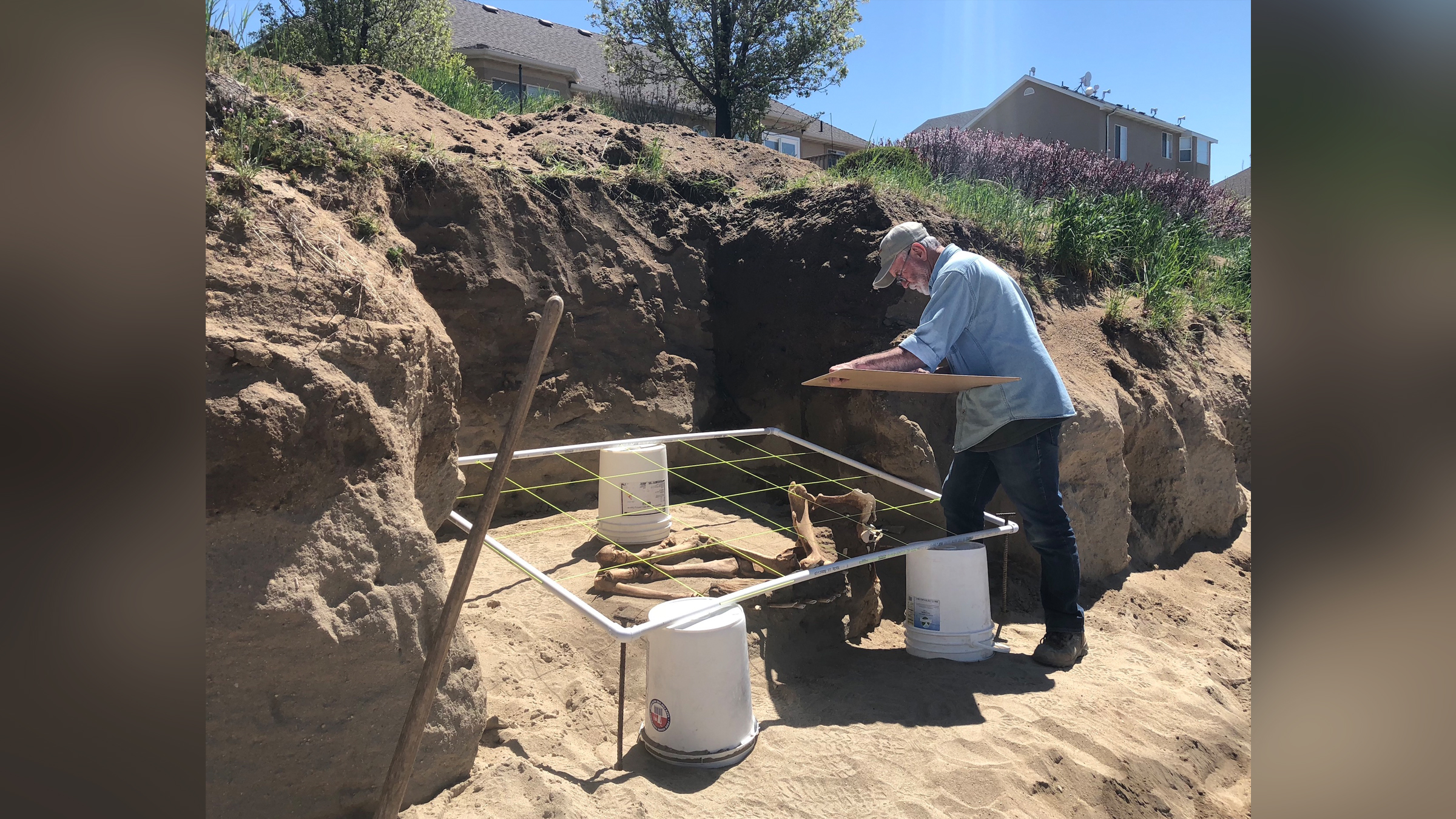 Le paléontologue Rick Hunter fouille le squelette du cheval Lehi dans une arrière-cour de l'Utah.