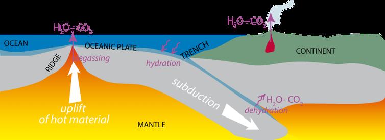Interactions avec l'eau, la tectonique des plaques et le CO₂.