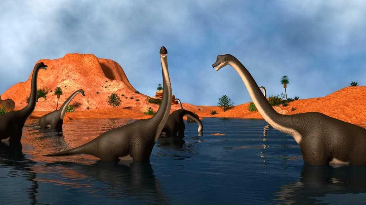 Une comète du bord des systèmes solaires a déclenché un hiver qui a tué les dinosaures il y a 66 millions d'années: étude de Harvard