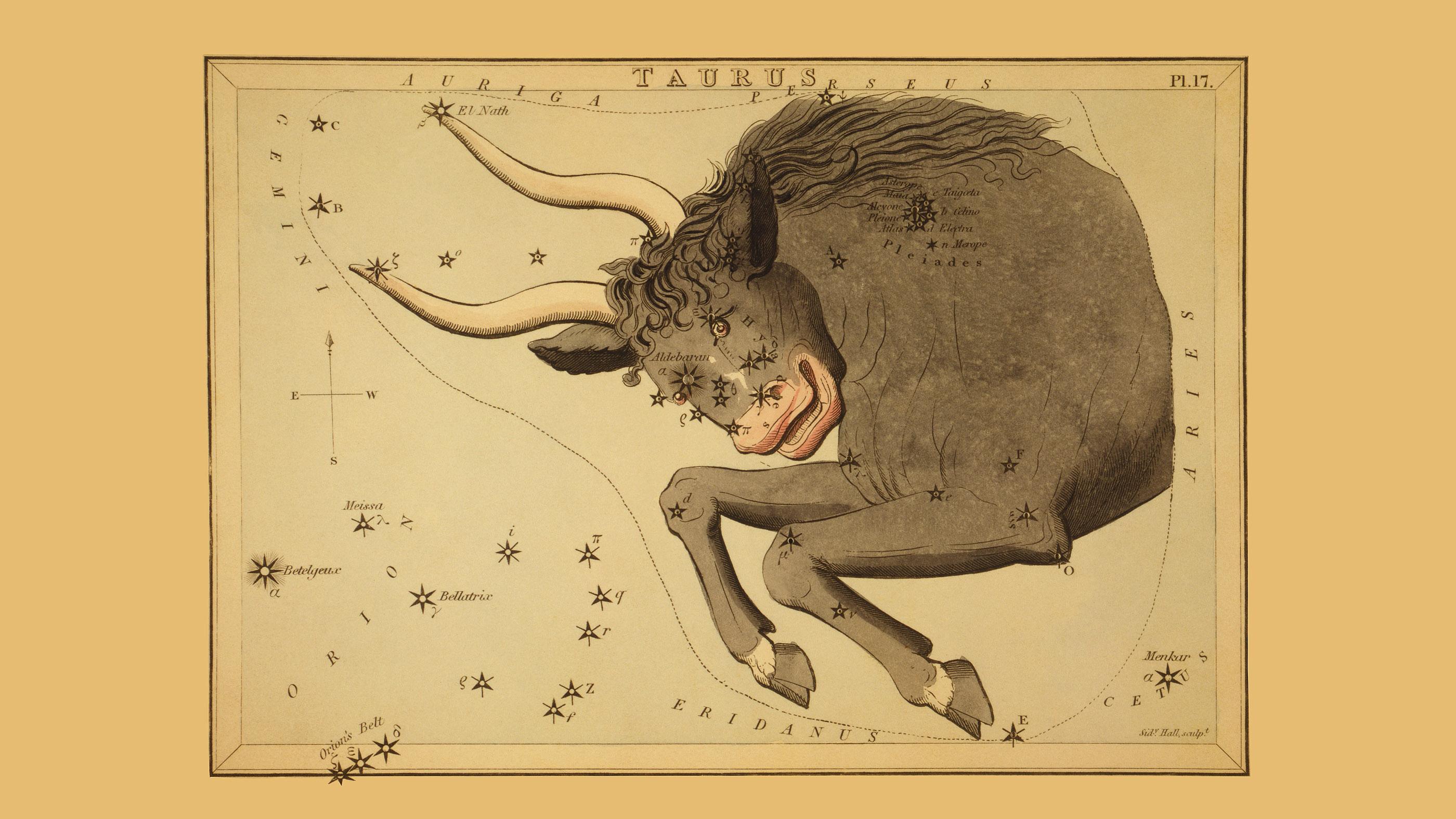 Carte astronomique montrant le taureau Taureau formant la constellation, révélant l'amas d'étoiles des Pléiades.