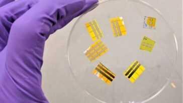 Ils développent des «tatouages OLED» qui permettent de placer les lumières directement sur la peau