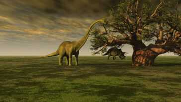 Les Restes D'un énorme Lézard Herbivore En Argentine Sont Probablement