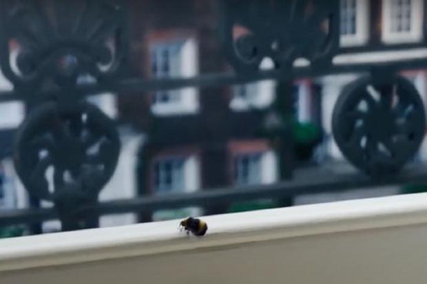 """La scène finale de la première saison de """"Bridgerton"""" (Photo: Netflix)"""