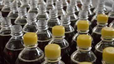 La bouteille en plastique qui a le moins d'impact sur l'environnement
