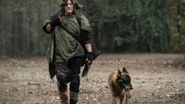Ils révèlent l'origine du chien de Daryl dans `` The Walking Dead ''