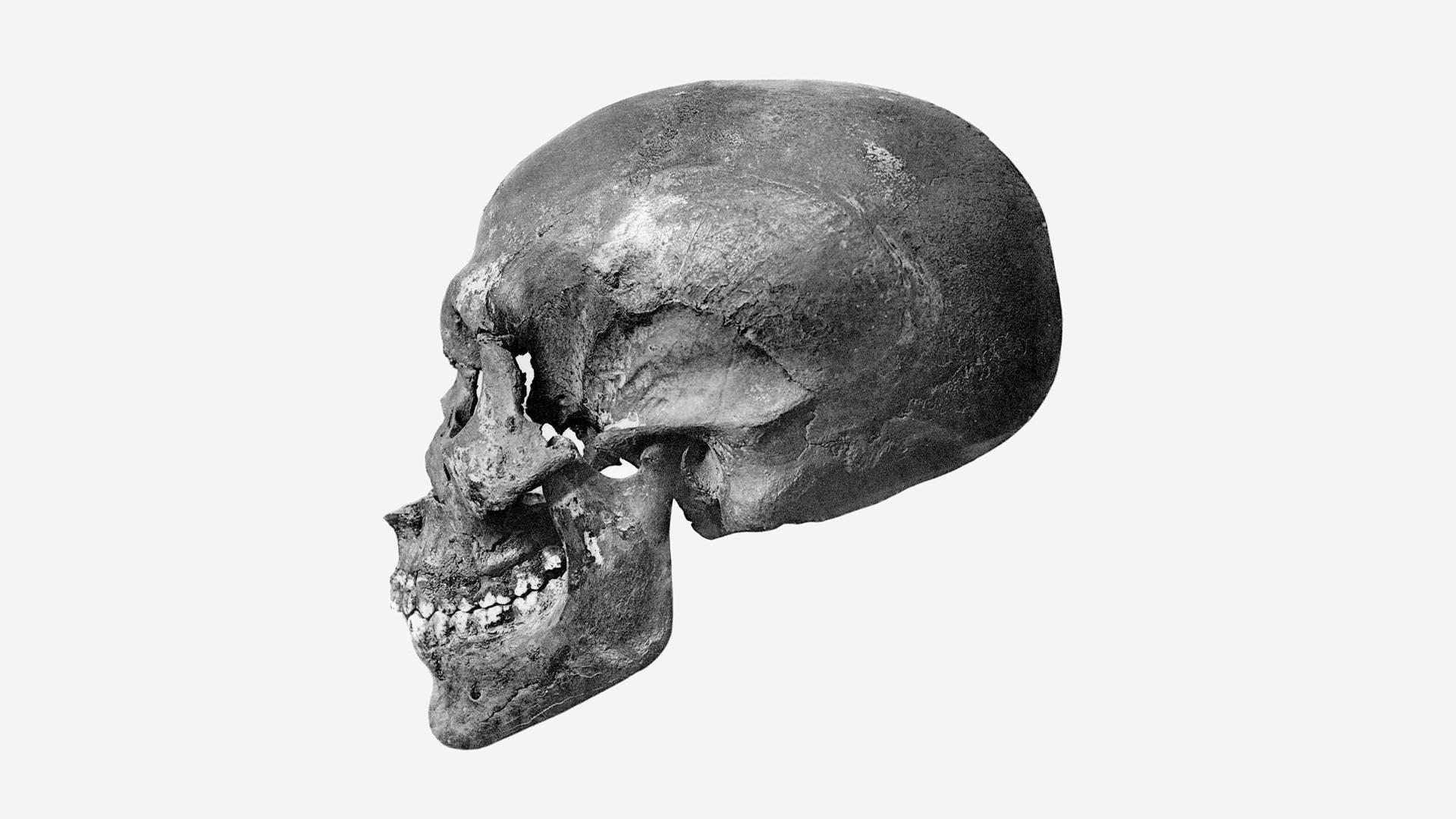 Lorsque les archéologues ont fouillé le KV 55 en 1907, la momie s'est effondrée en poussière.  Aujourd'hui, seuls les os restent.