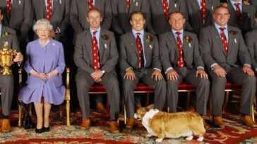La reine Elizabeth ajoute 2 membres de la famille à fourrure - des chiots corgi!