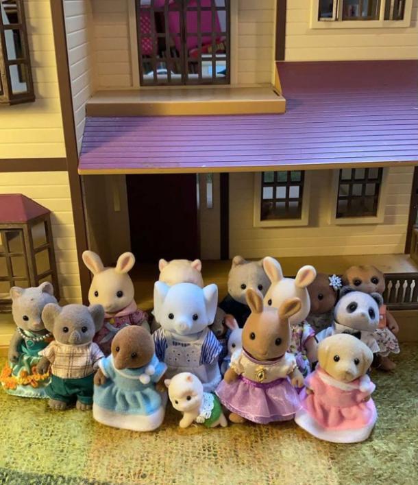Familles de Sylvanian Drama