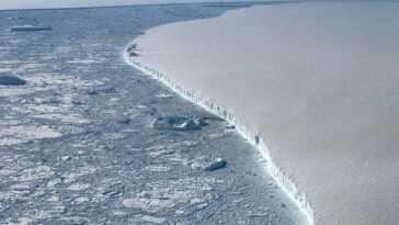 Plus D'un Tiers De La Banquise Antarctique Pourrait S'effondrer à