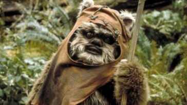 Un singe devient viral pour sa ressemblance avec l'Ewok de 'Star Wars'