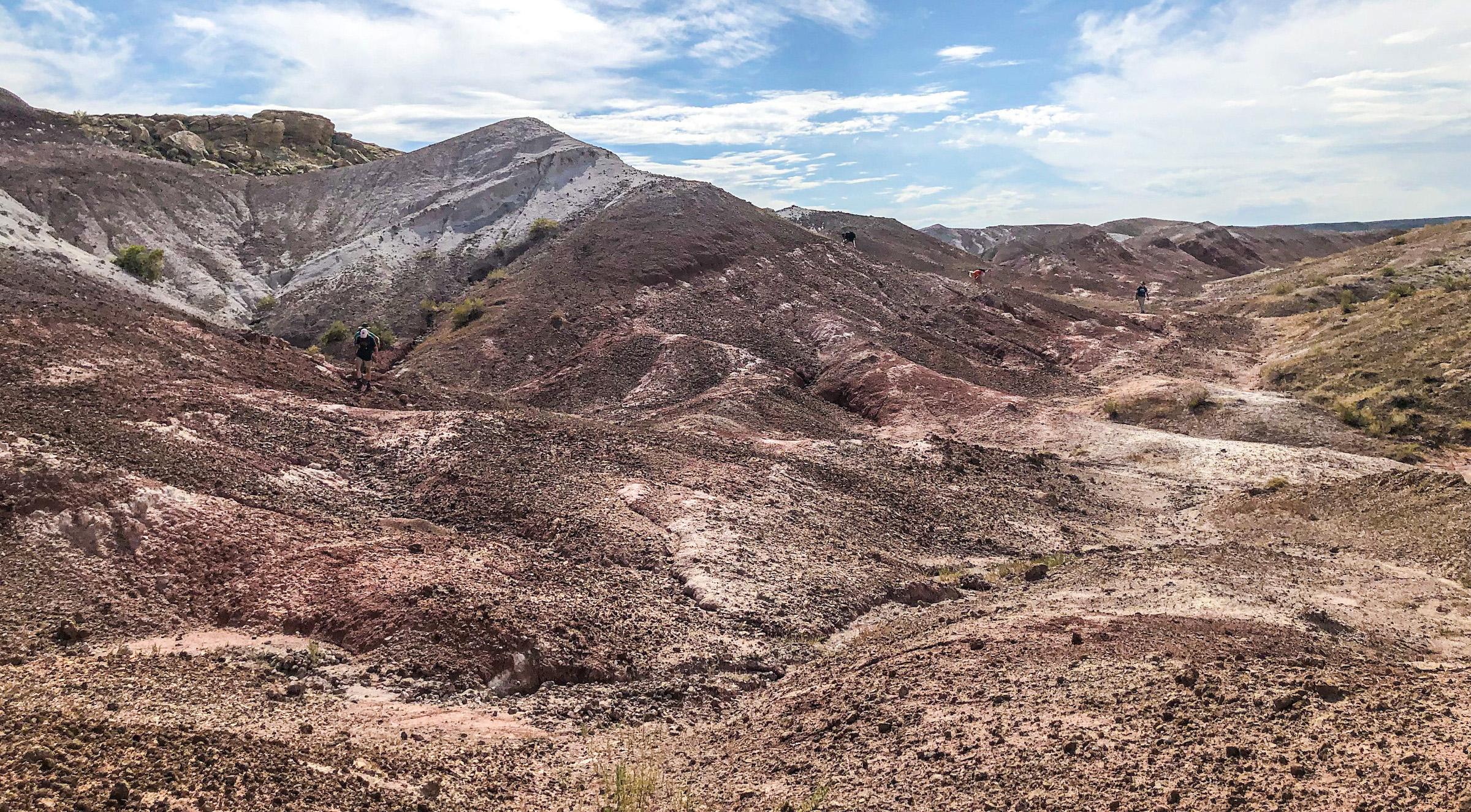 La formation de Morrison est célèbre pour ses fossiles du Jurassique tardif.