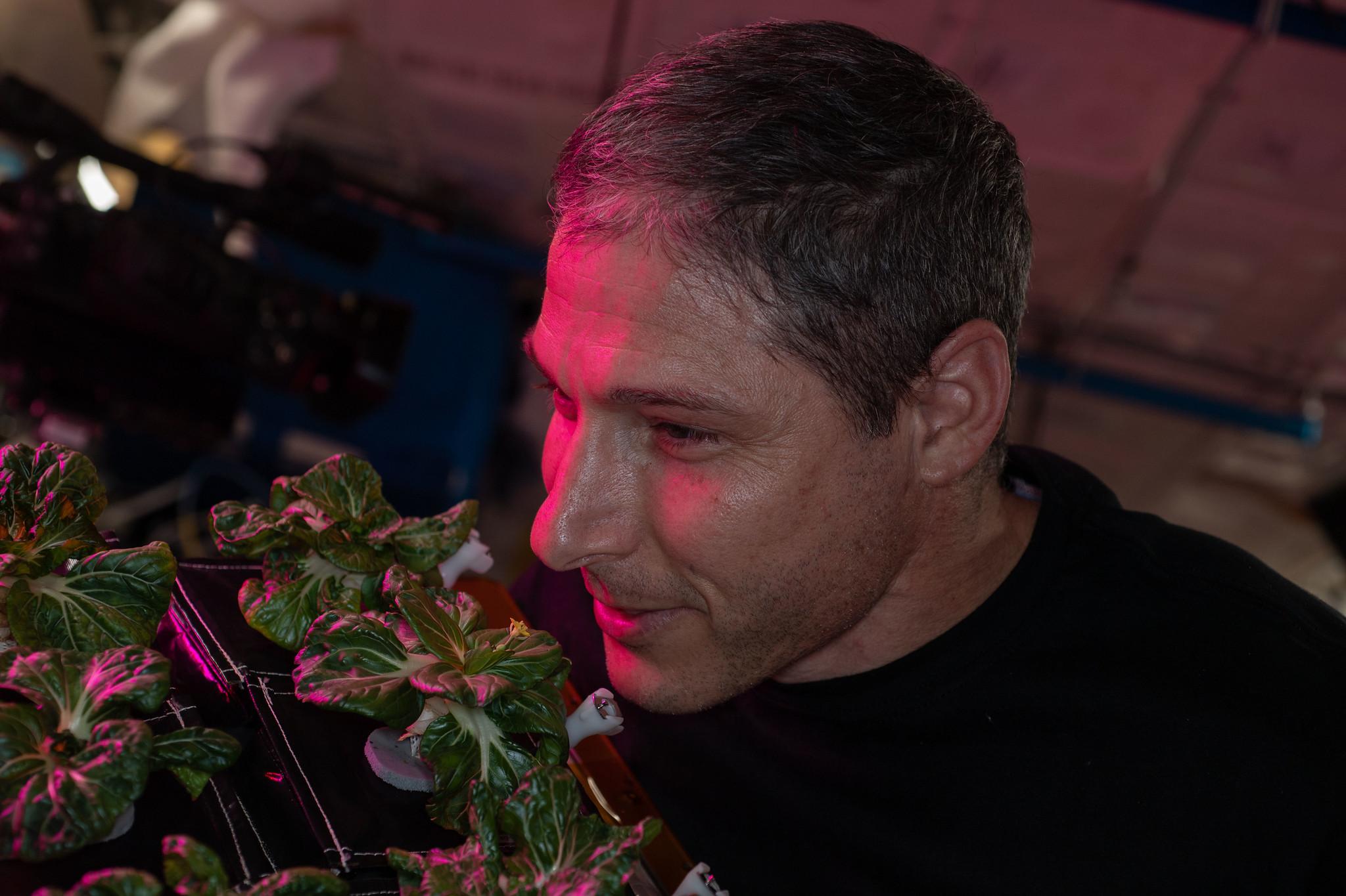 L'astronaute de la NASA Mike Hopkins sent les plantes poussant à bord de la Station spatiale internationale.
