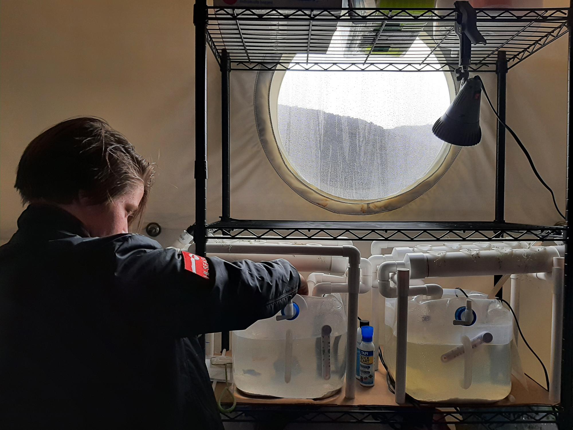 Crew Bioengineer Zoe Maxwell s'occupe de son expérience en se concentrant sur la croissance de bactéries mangeuses de perchlorate dans un système aquaponique avec des poissons pour la filtration durable du perchlorate présent sur Mars.