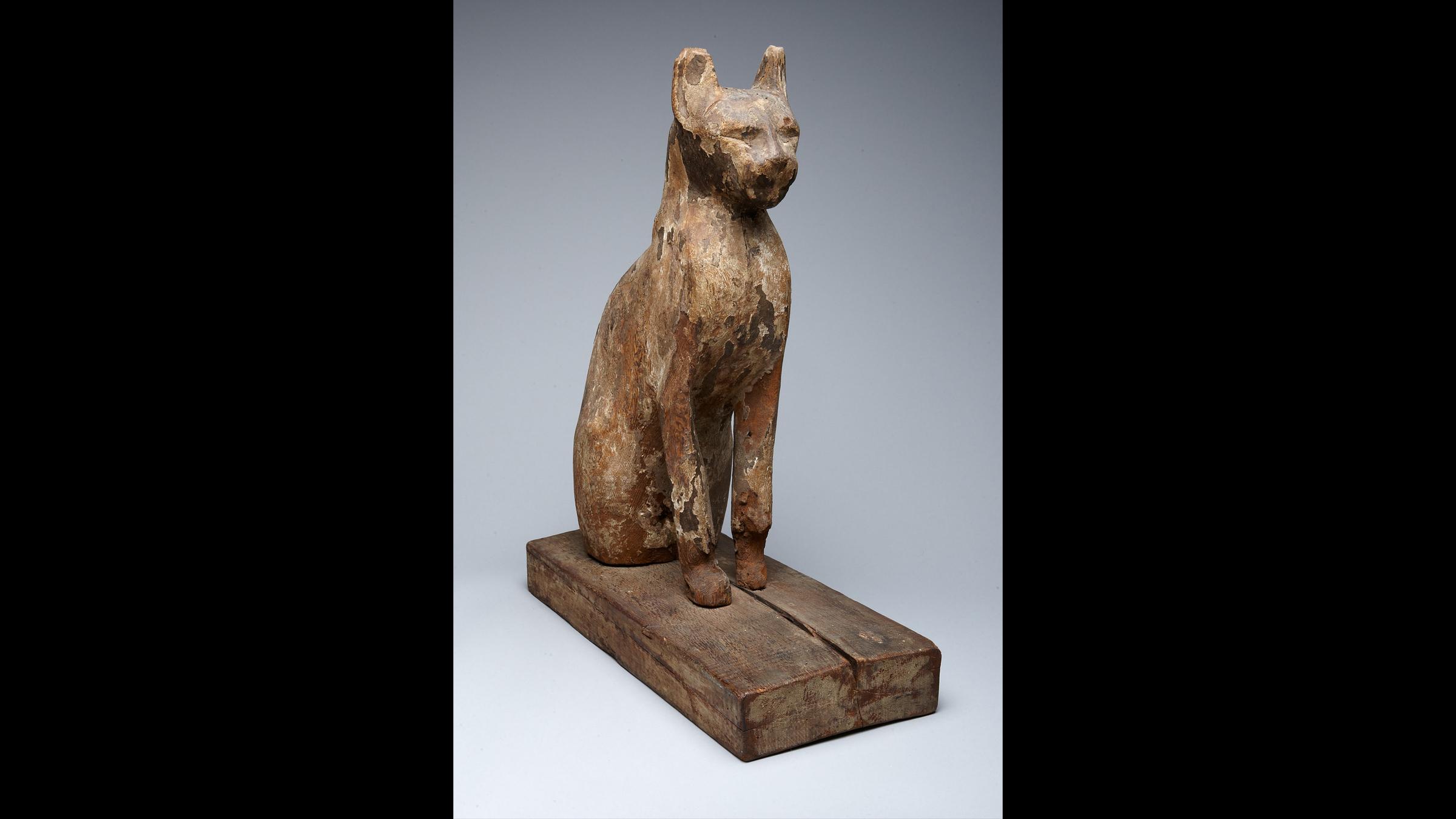 Le sarcophage d'un chat, datant de la fin de la période ptolémaïque de l'Égypte (environ 664–32 av. J.-C.).