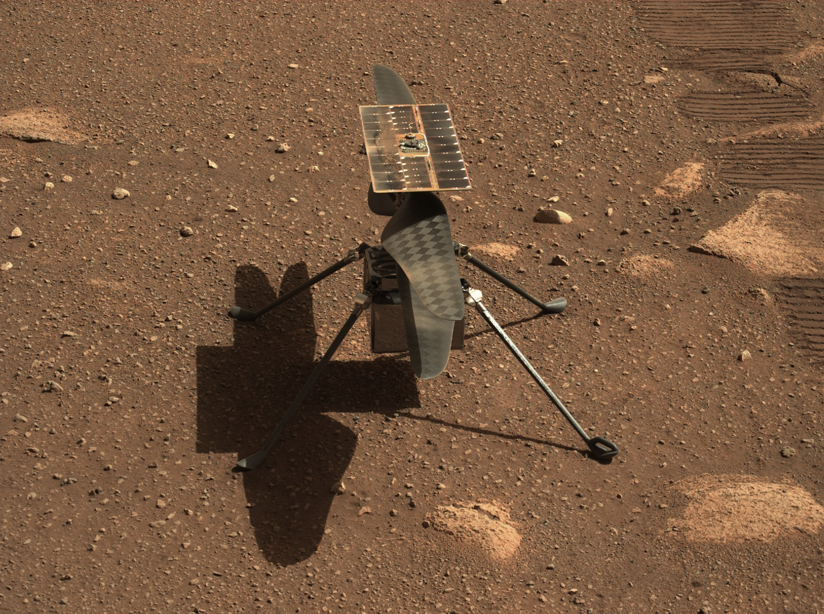 L'ingéniosité de l'hélicoptère sur Mars de la NASA est vue à la surface de la planète rouge par le rover de persévérance le 5 avril 2021.