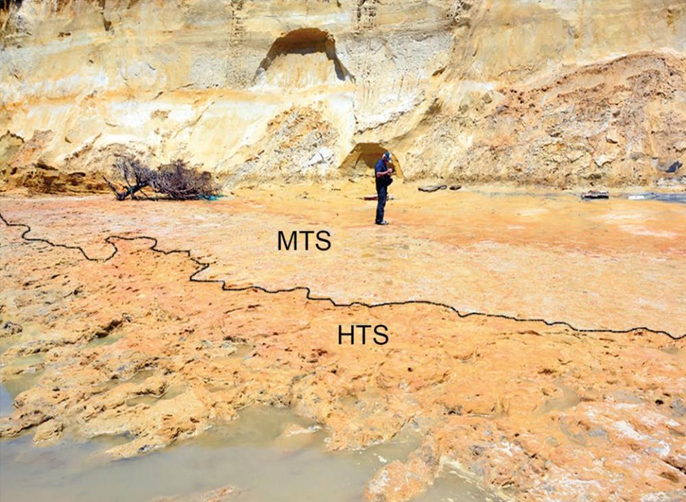 Les empreintes de pas ont été trouvées sur la plage de Matalascañas en Andalousie après que des tempêtes et des marées hautes ont exposé la surface où elles ont été faites (marquées ici comme HTS), maintenant juste au-dessus de la ligne de flottaison de la côte.