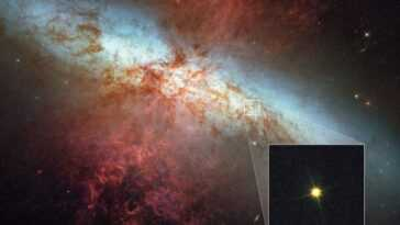 Des étoiles Naines Blanches Mourantes Peuvent Exploser Comme Une Bombe