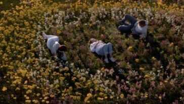 Grey's Anatomy: la scène qui pourrait signifier la fin de Meredith dans la série
