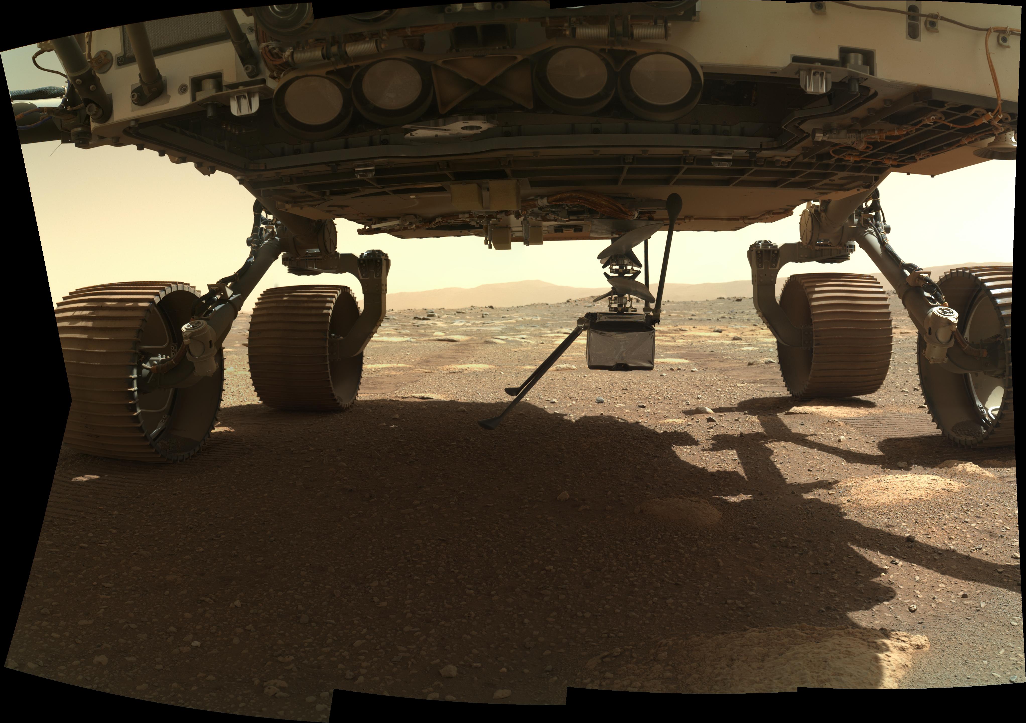L'ingéniosité s'étend verticalement depuis le ventre du rover Perseverance le 29 mars 2021, dans cette image prise par la caméra WATSON sur l'instrument SHERLOC, situé à l'extrémité du bras robotique du rover.