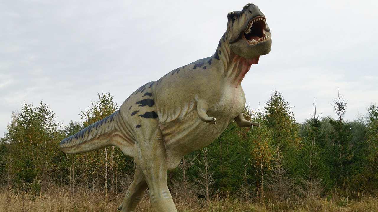 La Terre abritait des milliards de T-rex sur des milliers de générations, suggère une nouvelle étude