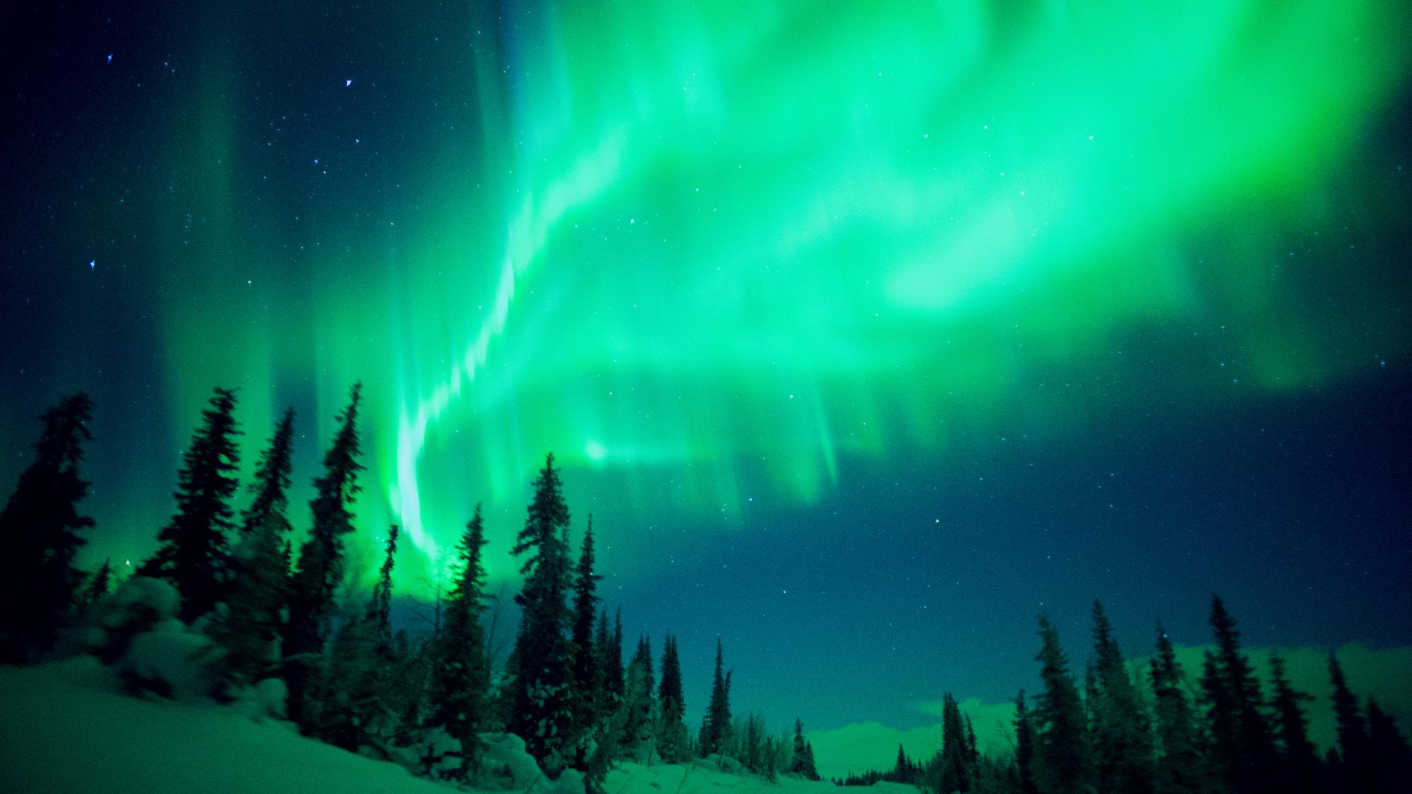 """Les aurores dansent dans le ciel nocturne dans le documentaire du réalisateur Tom Lowe """"Éveiller,"""" qui a fait ses débuts le 9 avril 2021."""