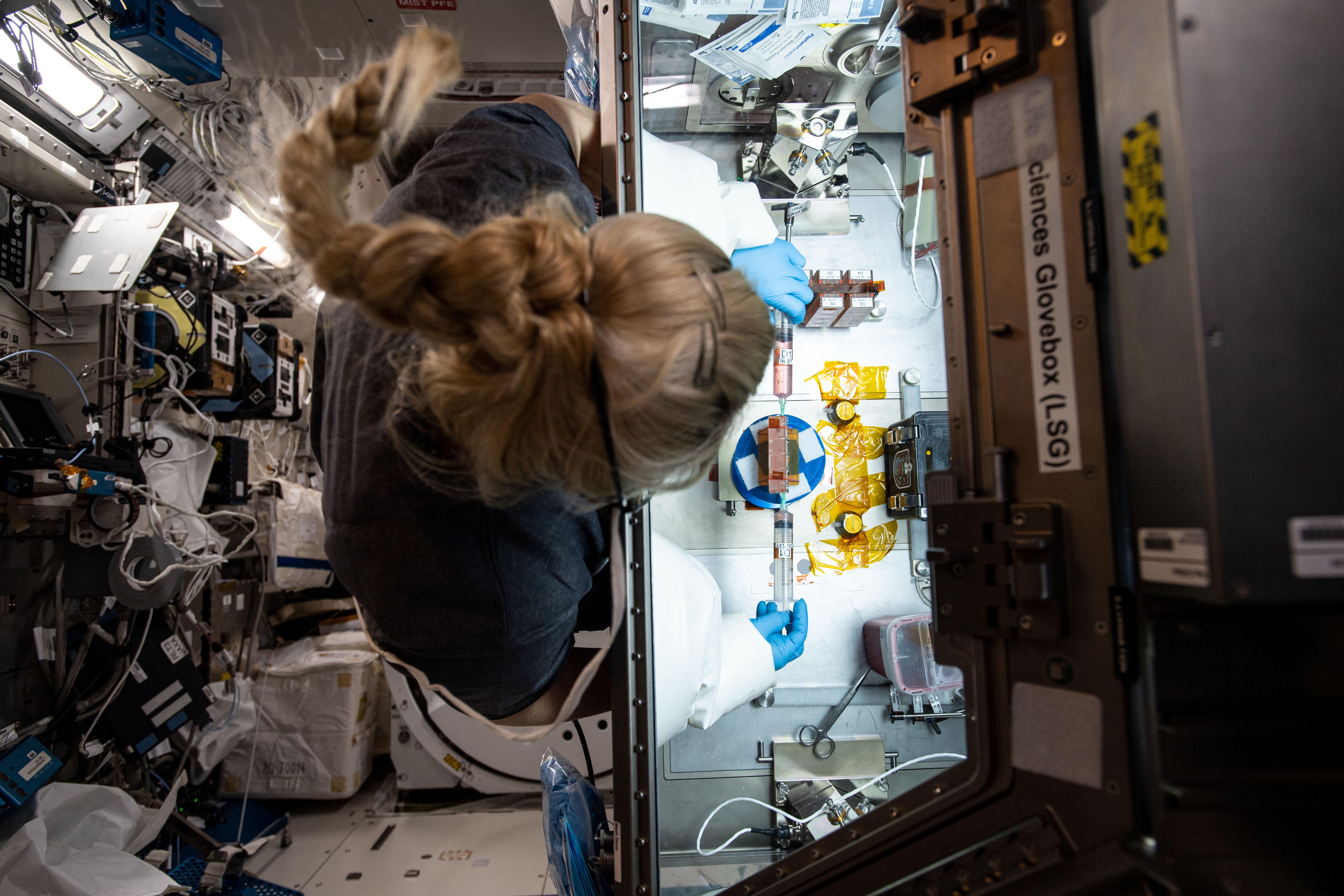 L'astronaute de la NASA Kate Rubins travaille sur une enquête sur une puce de tissu à la Station spatiale internationale, en décembre 2020.