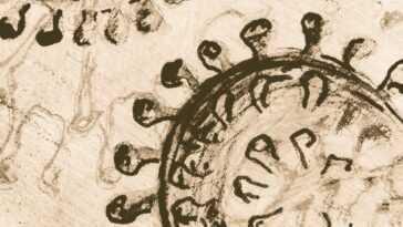 Un Ancien Coronavirus A Balayé L'asie De L'est Il Y